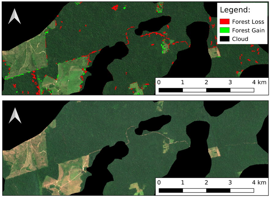 Figure showing the change detection carried out between the 10th August 2019 and 9th September 2019, with forest loss accurately following the pattern of the road
